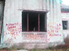 Pared de un edificio abandonado hace muchos años